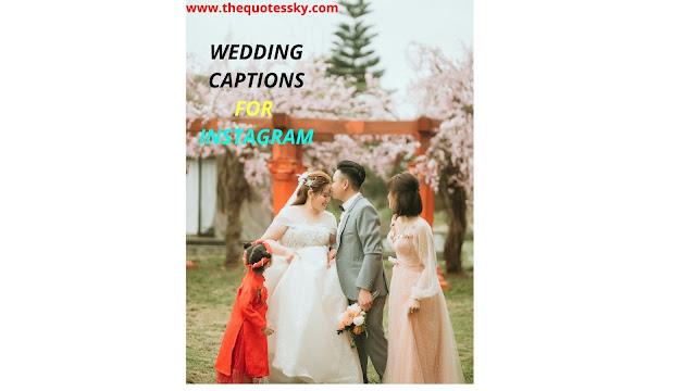 500+ Wedding Photography Quotes and Captions for Instagram