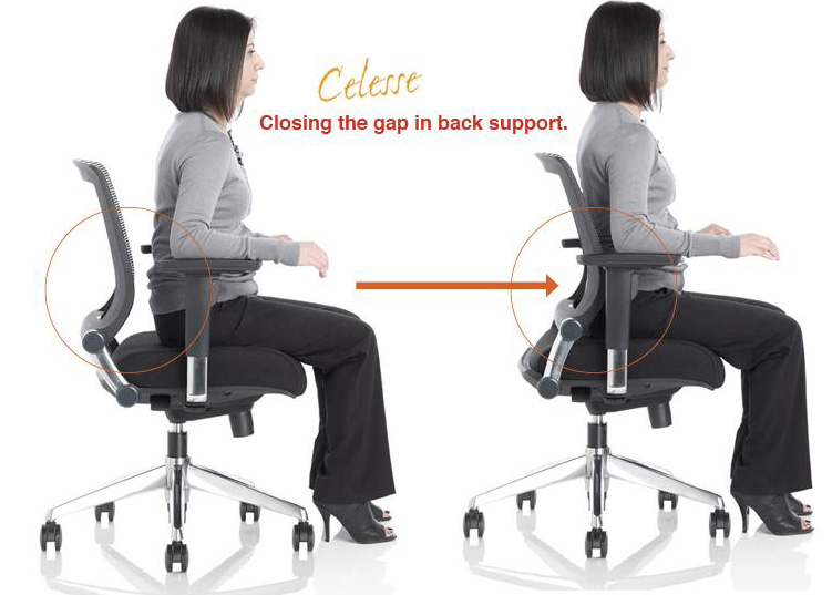 ergonomic chair back support cushion oversized chaise lounge chairs desk lower home decoration club office have addressed productive spaces friant new way to lumbar