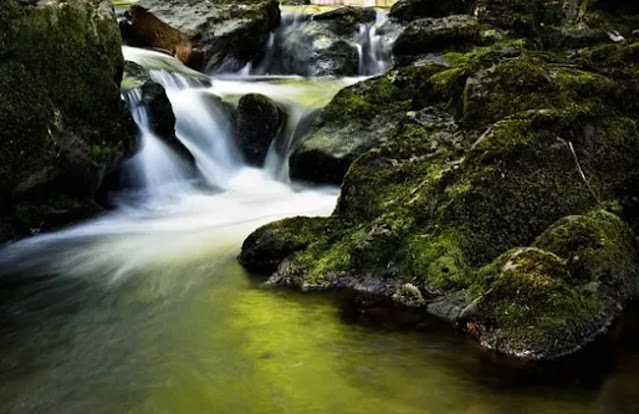 Nature Background Images Download