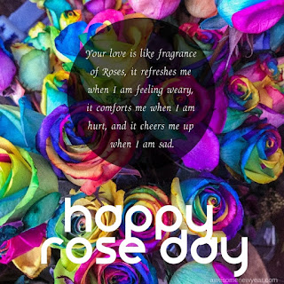 Rose Day pics
