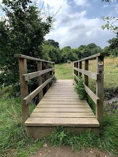 bridge to field