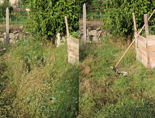 Before and after scything the grass