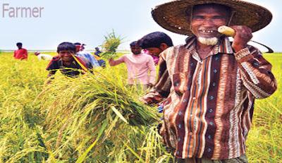 farmer occupation
