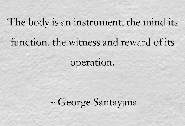 Quotes by George Santayana
