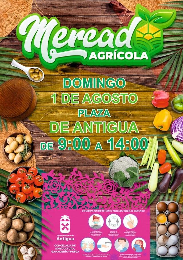 Fuerteventura.-  Tercer Mercado Agrícola de Antigua se celebrará el Domingo 1 de Agosto