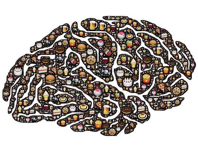 cerebro con dieta obsesva