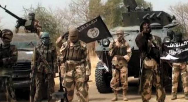 نيجيريا: مقتل 43 مزارعًا على الأقل على يد بوكو حرام في أحد الحقول