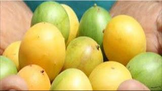 gambar buah umbu