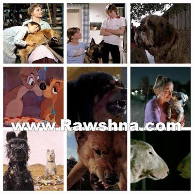 أفضل افلام الكلاب القاتلة على الإطلاق