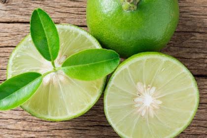 Manfaat Buah Jeruk Nipis Untuk Kesehatan Tubuh
