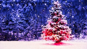 christmas quotes images free download