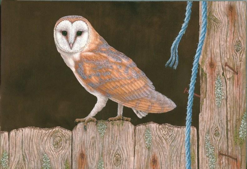 Pintura de Coruja