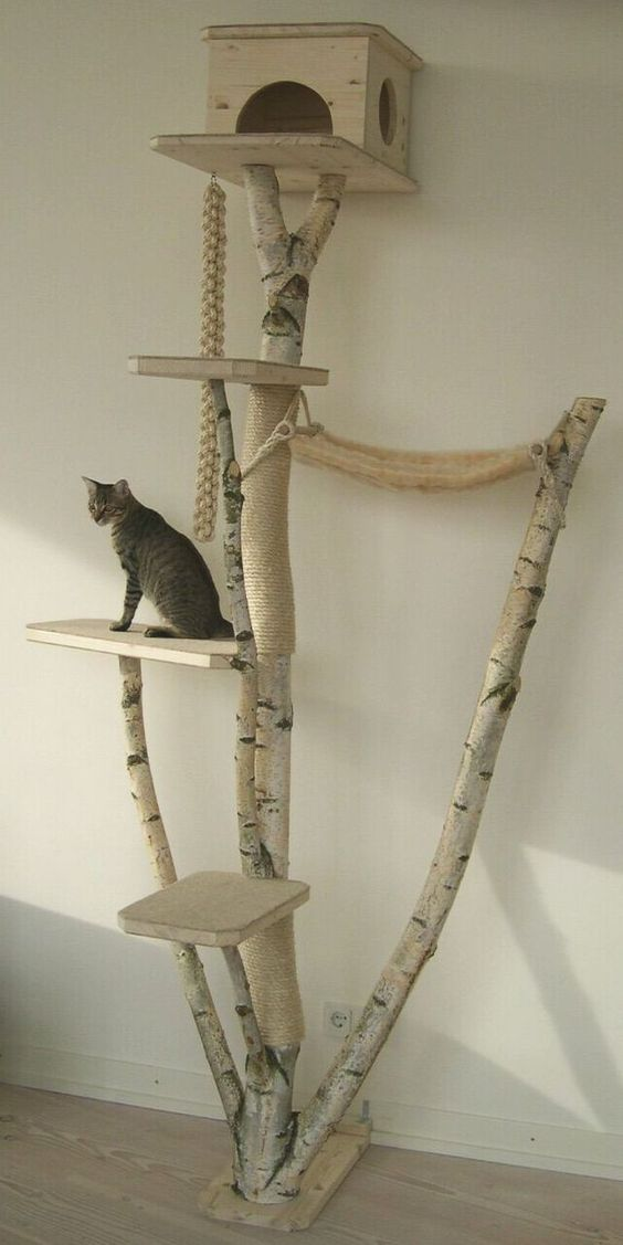 Cat Tree 1