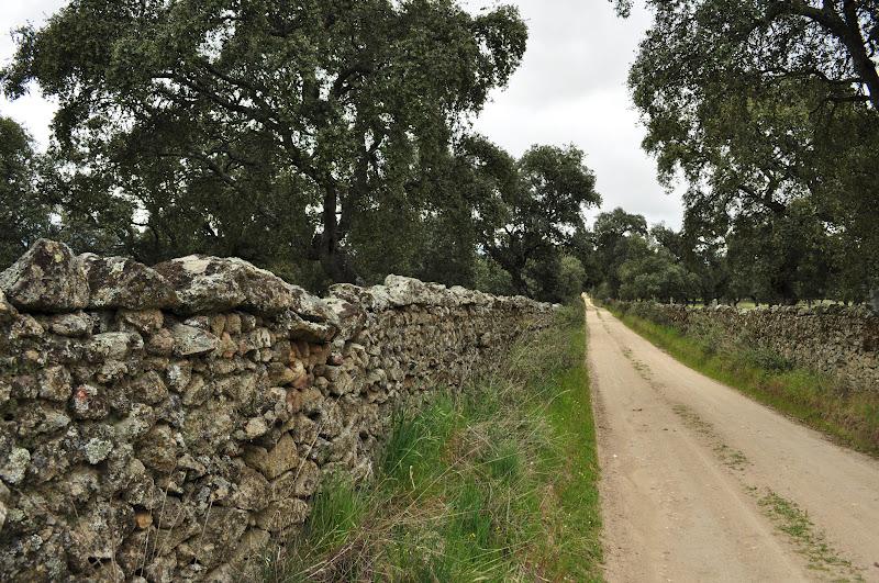 Rioyeguas vallas de piedras en los pedroches se impone - Vallas de piedra ...