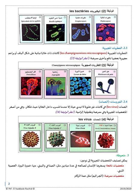 الدرس الأول من علم المناعة علوم الحياة والأرض الجراثيم الثالث إعدادي
