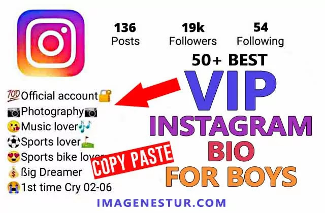 Best vip Instagram bio for boys full of attitude, savage and swag. you can copy paste these cool instagram profile bio with stylish fonts and emojis.