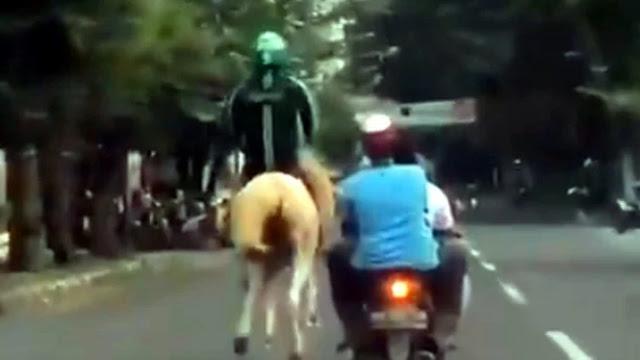 Viral! Aksi Unik Drivel Ojol, Naik Kuda di Jalan Raya