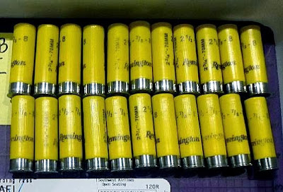 Shotgun Shells in Carry-on Bag (SMF)