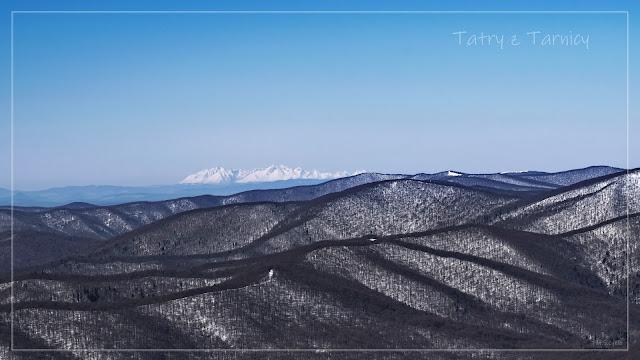 zima w Bieszczadach - Tatry z Tarnicy