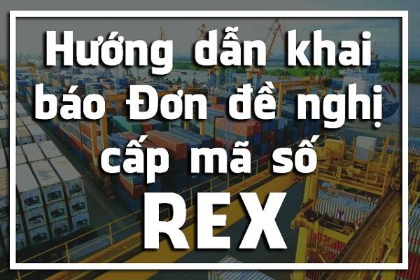 Hướng dẫn đăng ký mã số REX xuất khẩu EU