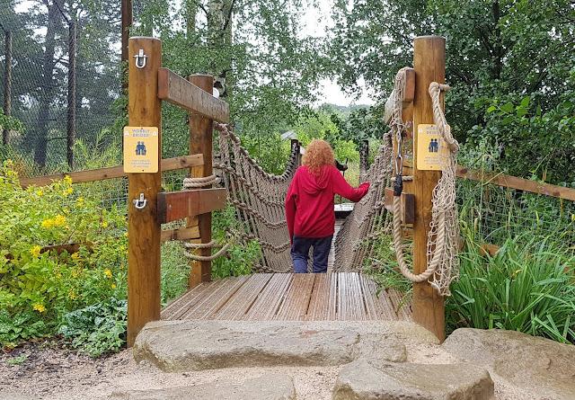 Knowsley Ultimate Brick Safari child crossing over Wobbly Bridge near tigers