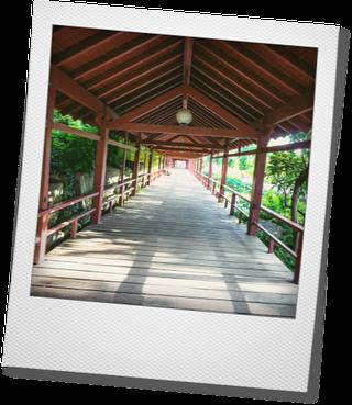Déambulatoire couvert du jardin japonais de l'Ile de Versailles à Nantes