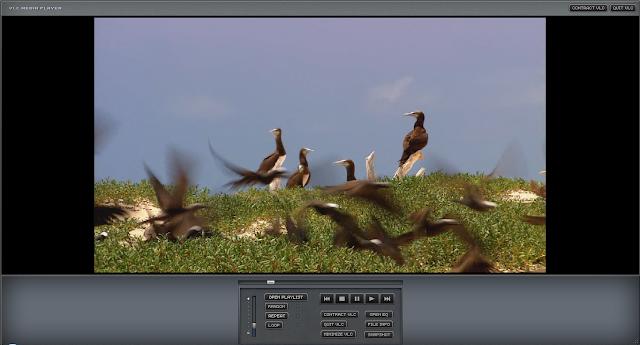Cara Mengganti Skin atau Tema VLC Media Player