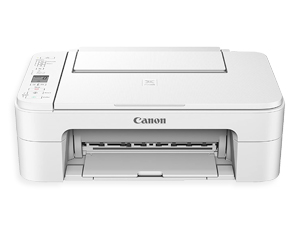 Canon PIXMA TS3151 Printer