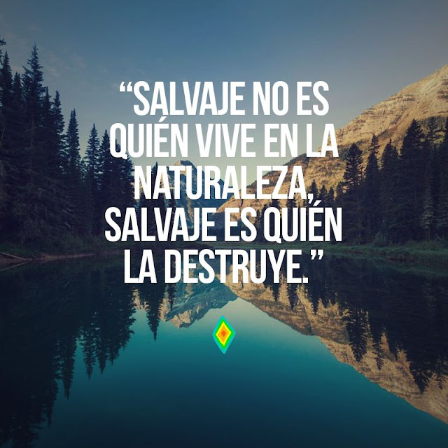 frases ecologicas