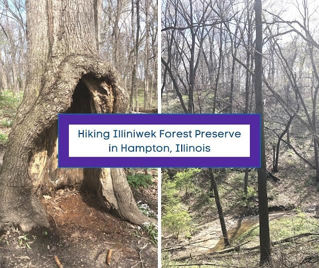 Ravines, Wildflowers and Views Sparkle at Illiniwek Forest Preserve in Hampton, Illinois