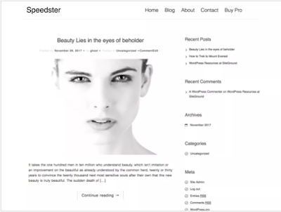 Speedster - Theme Wordpress SEO Responsive Free Download