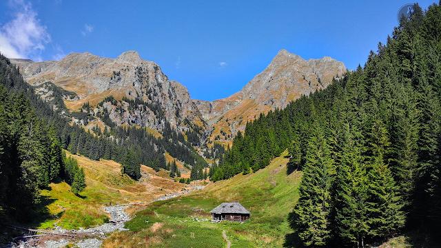 Traseu în masivul Făgăraș - Vârful Moldoveanu prin Valea Rea, de la Stâna lui Burnei
