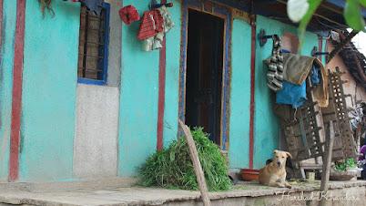 शेतातल्या घराचा राखनदार पिंट्या