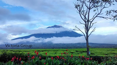 Kerinci Mountain - Adventure -  Victoria Traveling -