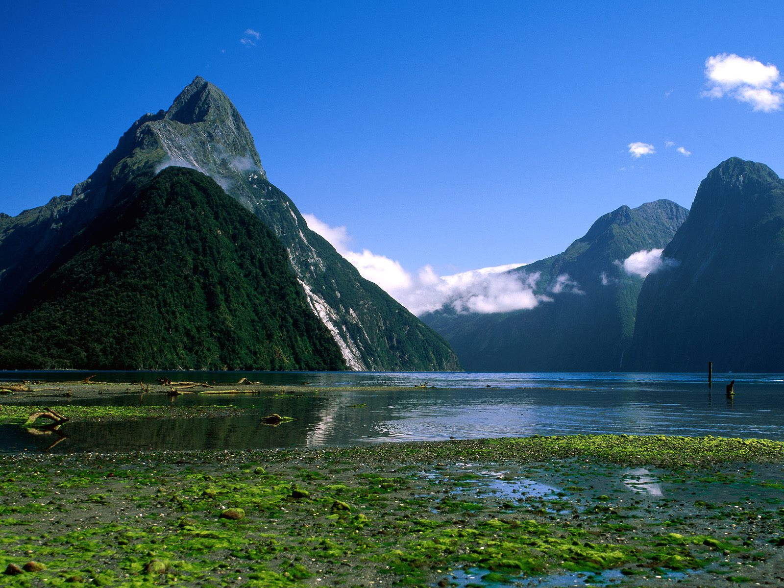 Video Penembakan Di New Zealand Hd: New Zealand Beautiful Wallpaper 1600 × 1200