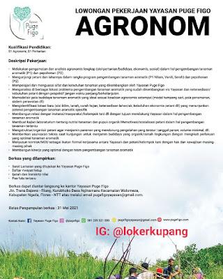 Lowongan Kerja Yayasan Puge Figo Sebagai Agronom