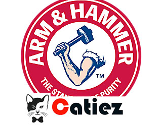 Arm & Hammer Cat Litter Review