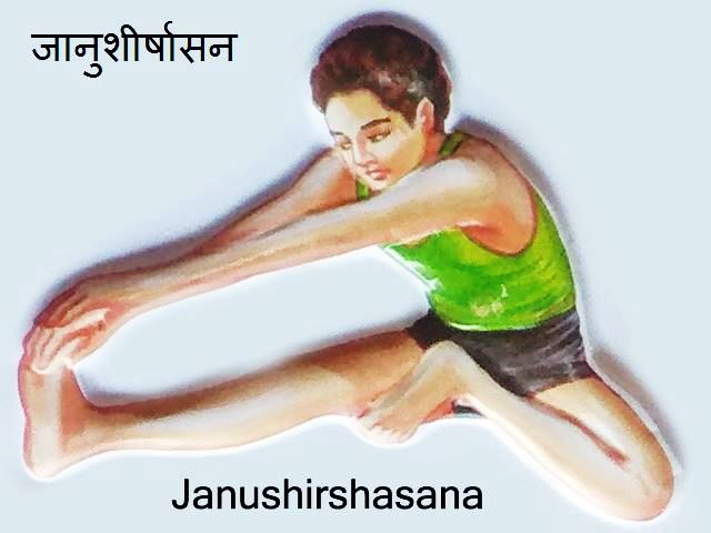Janu Shirshasana: Janu Shirshasana in hindi
