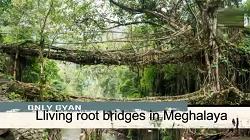 Ye Hai Duniya Ke Pracheen Aur Purane Bridges