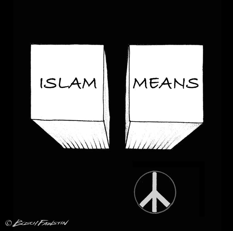 islam+means+by+bosch+fawstin.jpg