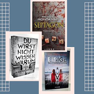 Warum du diese 3 Thriller lesen solltest ... meine Leseempfehlung Silke Boldt Blog