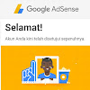 Akun Google Adsense Sudah Diapprove Kemudian Ada Email penolakan?
