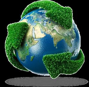 Acciones verdes