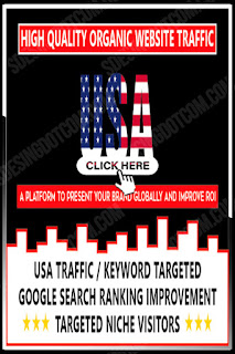 High Quality Targeted and Organic USA Web Traffic Genuine SEO strategy and Safe with google policies