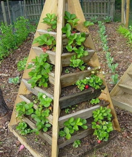 Ideas for small gardens 7