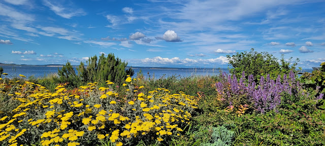 Beautiful view from Point Hudson in Port Townsend