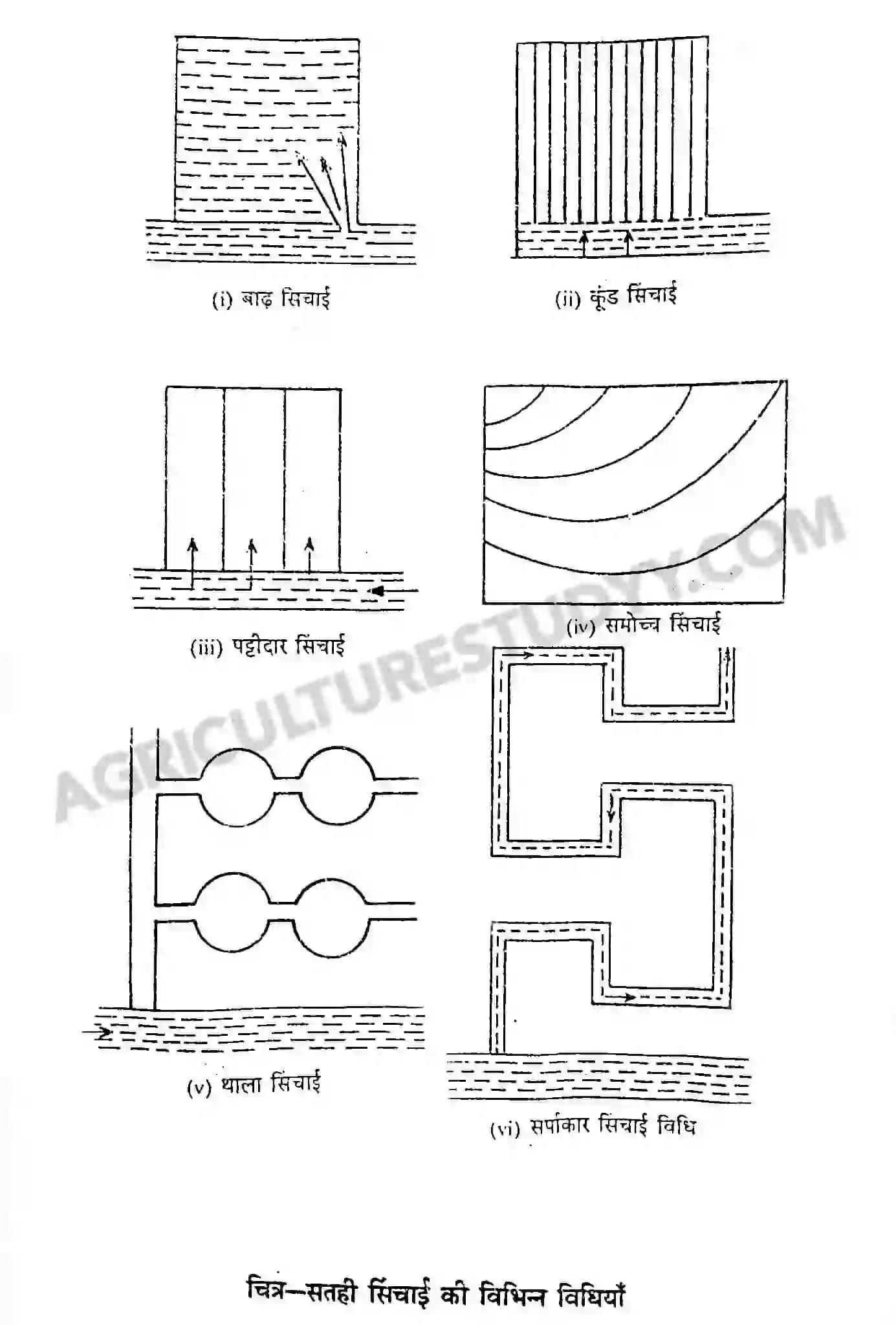 खुली/सतही सिंचाई विधि ( Surface Irrigation In Hindi )