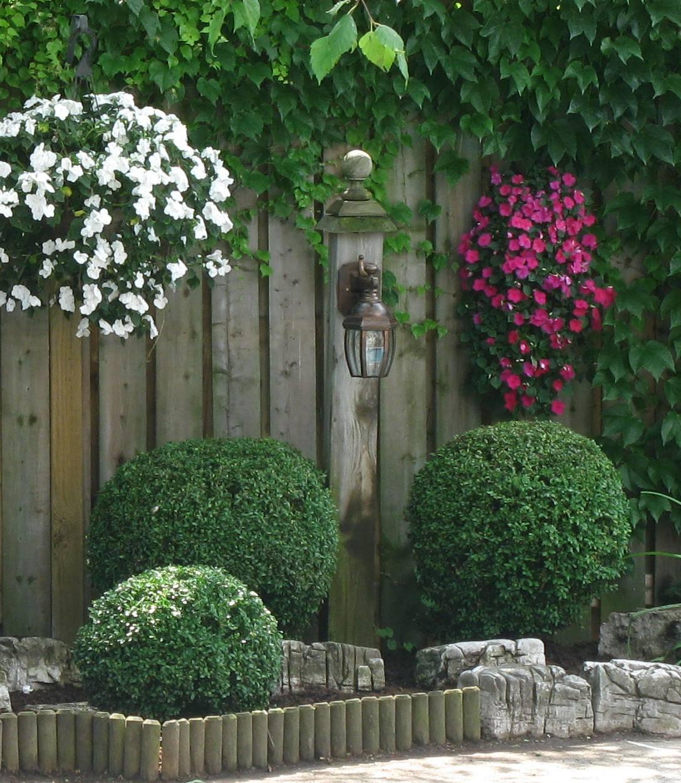 Garden Decor Ontario: White Swan Homes And Gardens: Boxwoods For Ontario Landscapes