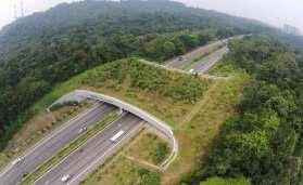 Bukit Timah Expressway di Singapura