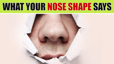 Shape Of Your Nose